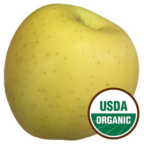 APPLE GOLDEN  DELICIOUS ORGANIC 1lb