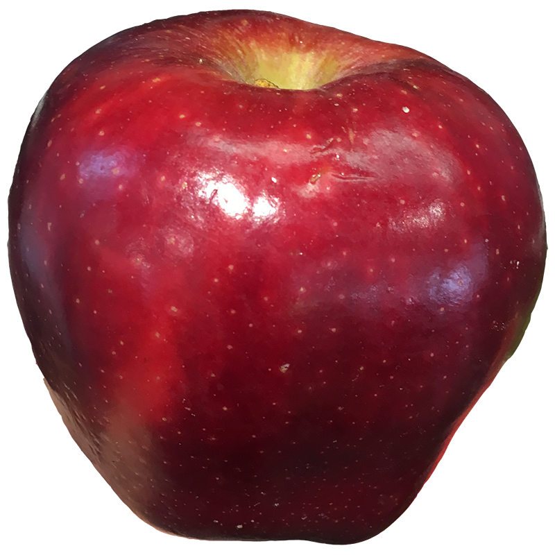 APPLE RED DELICIOUS 1lb