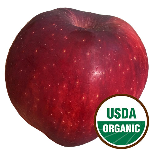 APPLE RED DELICIOUS ORGANIC
