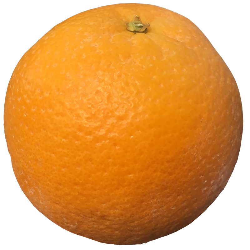 NAVEL ORANGE LARGE