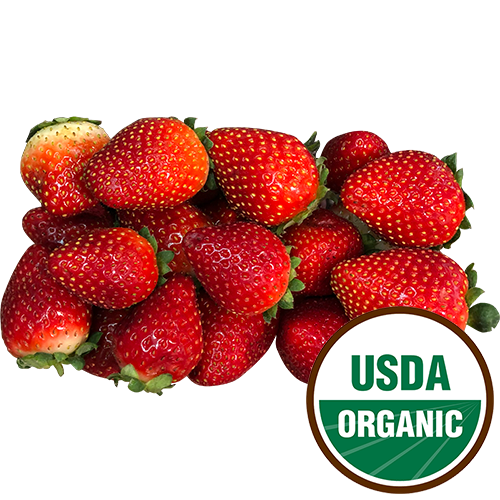 ORGANIC STRAWBERRIES 8.8oz