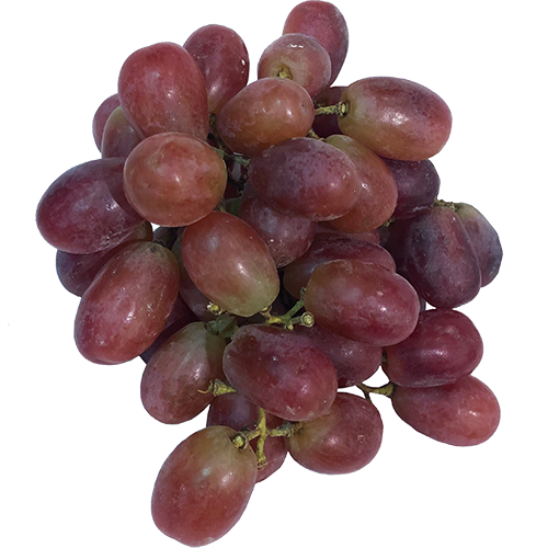 RED SEEDLESS GRAPES 16oz